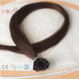 100%の人間の毛髪の暖かいブラウンの融合の毛の拡張(PPG-l-01542)