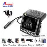 Het veterinaire Instrument van de Ultrasone klank met Sondes, Kenmerkende Ultrasone Weergave, Ecography, Veterinaire Medische Producten