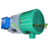 100kw 30rpm 자석 발전기, 3 단계 AC 영원한 자석 발전기, 낮은 Rpm와 바람 물 사용
