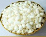 Les cocons en soie normaux frais respectueux de l'environnement de beauté pour le massage facial frottent