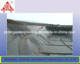 Geomembrane防水タンクはさみ金か混合のGeomembrane