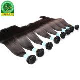 Prix compétitif vierge malaisien d'un sèche cheveux Accessoires