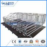 Hengyin 판매를 위한 새로운 디자인 돼지 임신 기간 크레이트
