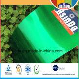 新しく光沢度の高いキャンデーの緑の透過粉のコーティング