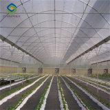 Multi Span Венло Тип стекла для продажи выбросов парниковых газов