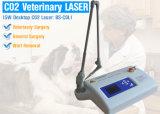 Macchina frazionaria chirurgica di trattamento del laser del CO2 del laser del CO2 portatile chirurgico del sistema