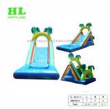 2 Lane надувные водными горками для детей в игре