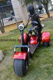 1500W Motociclo eléctrico com sacos de golfe titular