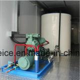 Macchine di fabbricazione di ghiaccio del fiocco da 10 tonnellate/creatori messi in recipienti/pianta in un contenitore di 20FT da vendere