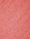 Doppeltes Gebrauch Microfiber Tuch mit pp. 4020/4021