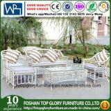 Châssis en aluminium en rotin de couleur blanche canapé en coupe de meubles de jardin en plein air (TG-006)