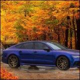 88234 Apple Verde/Azul Camaleón de pigmento de cambio de color de pintura