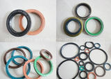 5000 Tailles de Tc NBR FKM Viton Rubber Shaft Oil Seal