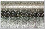 Fornitore esagonale galvanizzato della rete metallica della gabbia di /Chicken della rete metallica di prezzi bassi di Anping