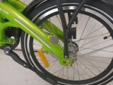2017 самых лучших сбываний 36V250W складывая электрический Bike батареи велосипеда дешево спрятанный электрический (FR-TDN15Z)