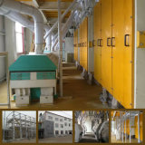 機械をふるい分けるPlansifterの小麦粉が付いている製造所160トンの小麦粉の