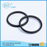 Anwendung in Special Cylinders Rod Seal