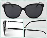 Bolsa elegante Óculos Pronto para E-Commerence Loja on-line