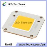 Chip puro della PANNOCCHIA di alto potere LED di bianco 40*46/24*24 50W del proiettore 6000K