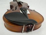 Instrument de musique tout l'équipement solide de violon