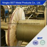 Fil d'acier de haute qualité la corde (0.6-60mm)