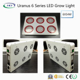 Full Spectrum COB Grow LED 324W (Série Uranus 6)