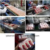 Les bouteilles Multi-Row Wider-Film Machine d'Emballage Rétractable