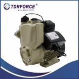 Type liquide chaud Zcm71-800A de pompe de transfert