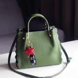 Echt Leer de Handtassen van de Manier van de Zak van Dame Bag New Design Woman Schouder van Guangzhou Supllier Emg5237