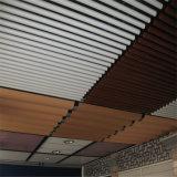 Profils en aluminium d'extrusion de plafond d'U-Forme pour décoratif intérieur de construction