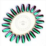 Colorant de chrome d'art de clou de manucure de scintillements de clou de miroir de caméléon