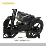 Cheap 36V 250W 16 pouces petit E-Bike de pliage pour les adultes