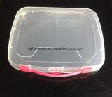 Горячая продажа высокое качество пластиковый контейнер для хранения в салоне (Hsyy703)