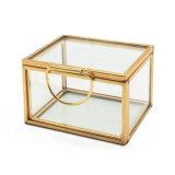 Progettare il contenitore per il cliente di monili di vetro per l'anello e gli orecchini