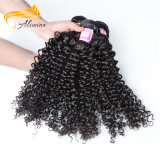 ペルーのねじれたカールの毛の織り方1つの供給のバージンの毛