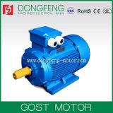 Электрический двигатель AC тела чугуна Stadard GOST трехфазный
