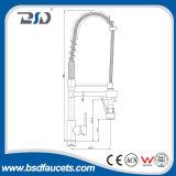 L'ottone del bicromato di potassio estrae il rubinetto della cucina dello spruzzatore con il singoli foro/maniglia