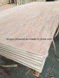 Madera comercial los álamos / / El contrachapado de abedul de pino para muebles