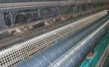 De Glasvezel Geogrid van treksterkte 30-30 door Technologie Te weven