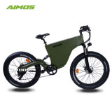750W Conceited Car Electric Bike with 48V 14.5ah Battery