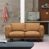 Modernes Gewebe-Sofa des neuen eleganten Entwurfs-2017 (HC119)