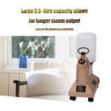 Facile utilisation Professional Home Appliance Garment cuiseur vapeur vertical