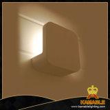 Einfache Wand-Lampe des Aluminium-LED (882W-LED)