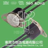 Interrupteur thermique d'épreuve de l'eau H31