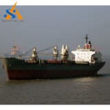 37000dwt buque granelero