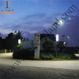 30W COB Ce RoHS IP65 Calle luz LED (DZJ-003)