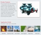 Изготовление водяной помпы двигателя дизеля Dg горизонтальное многошаговое