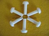 Noix en céramique de vis du Zirconia Zro2 - et - boulons