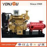 D는 디젤 엔진 관개 응용을%s 가진 다단식 원심 펌프를 타자를 친다