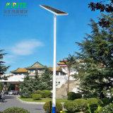 20With30With40With50With60With80With100With120W tutto compreso/ha integrato l'indicatore luminoso solare esterno del giardino della via del LED con il sensore di movimento